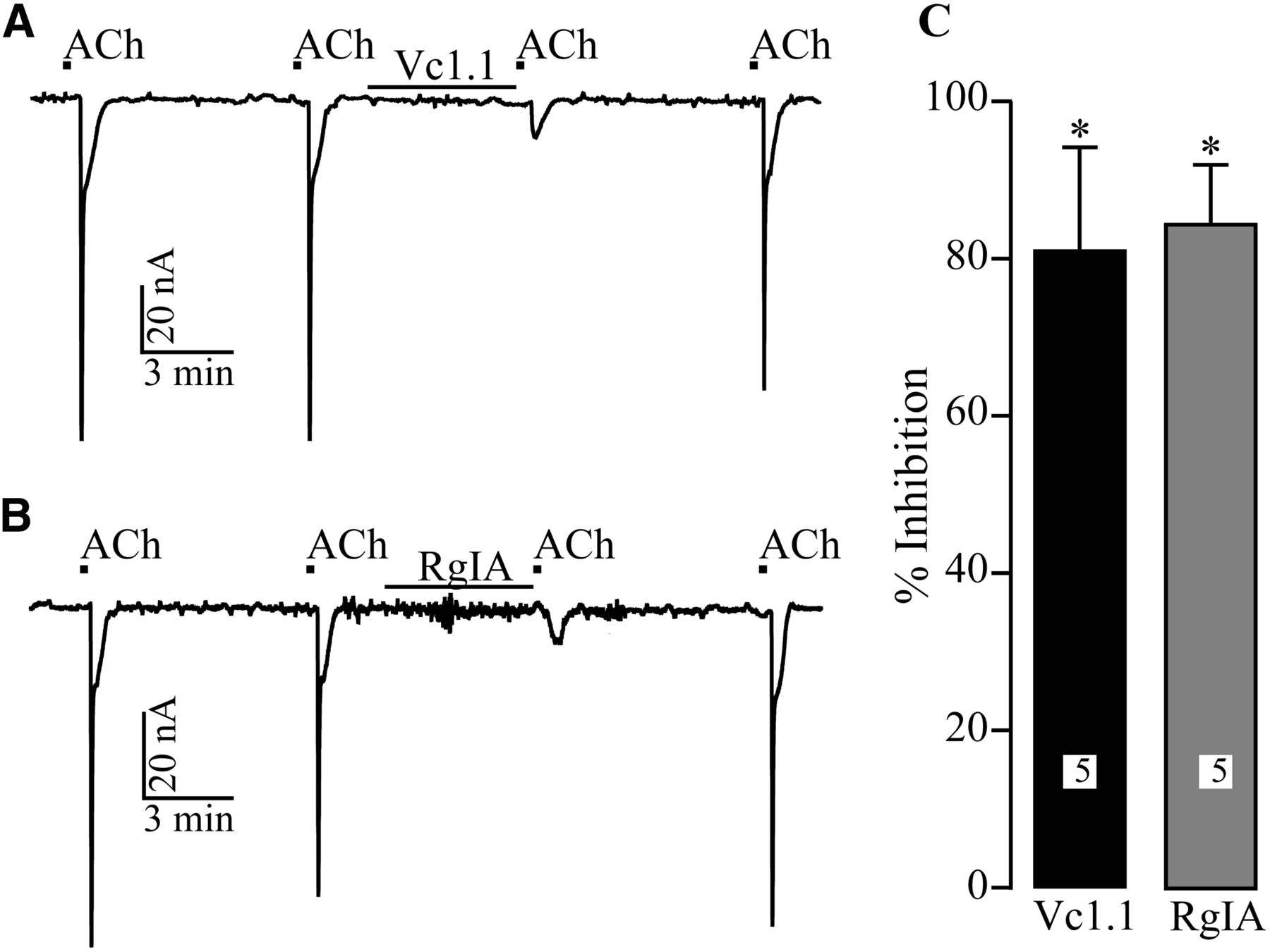 Limited Efficacy Of Conopeptides Vc11 And Rgia To Inhibit Pentium 1 Block Diagram Download Figure