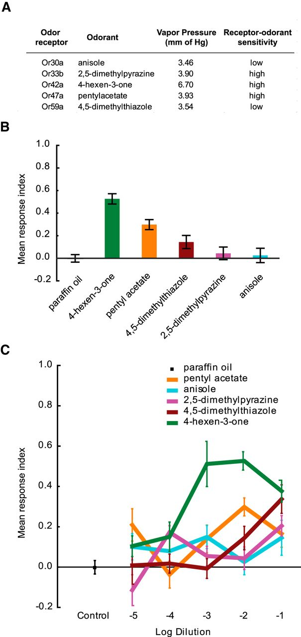 Differential Contributions of Olfactory Receptor Neurons in a ...