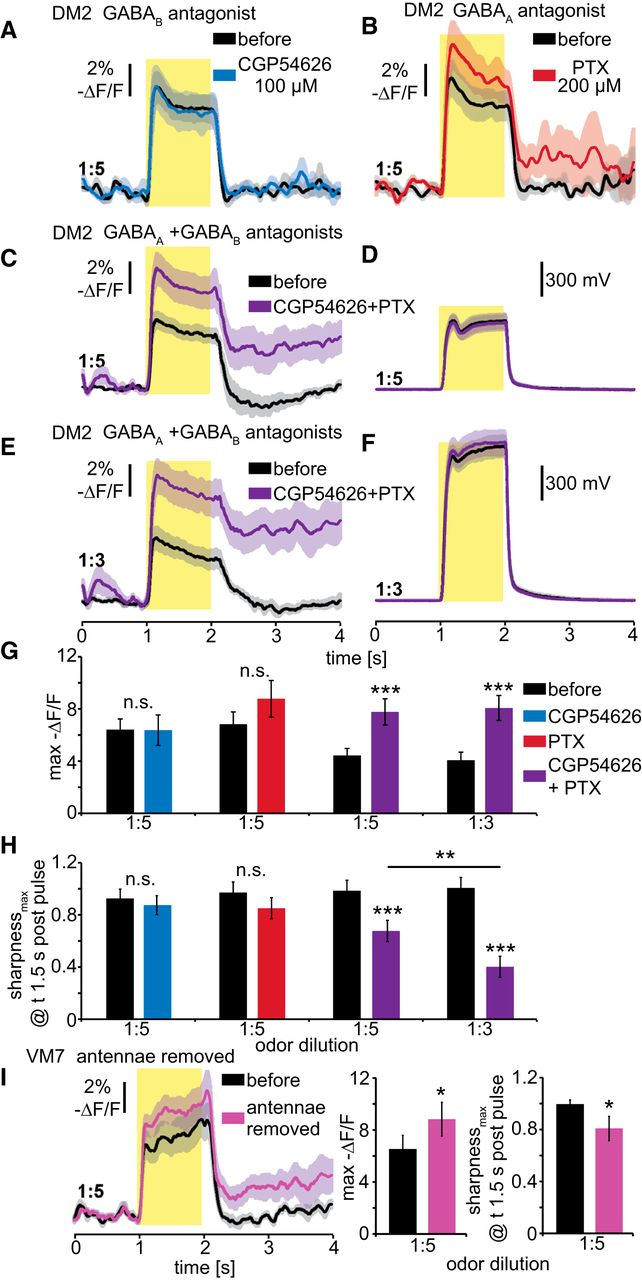 Presynaptic Gaba Receptors Mediate Temporal Contrast Enhancement In Negatives O No Darkroom Hassle Circuit Boards Quotondemand Download Figure