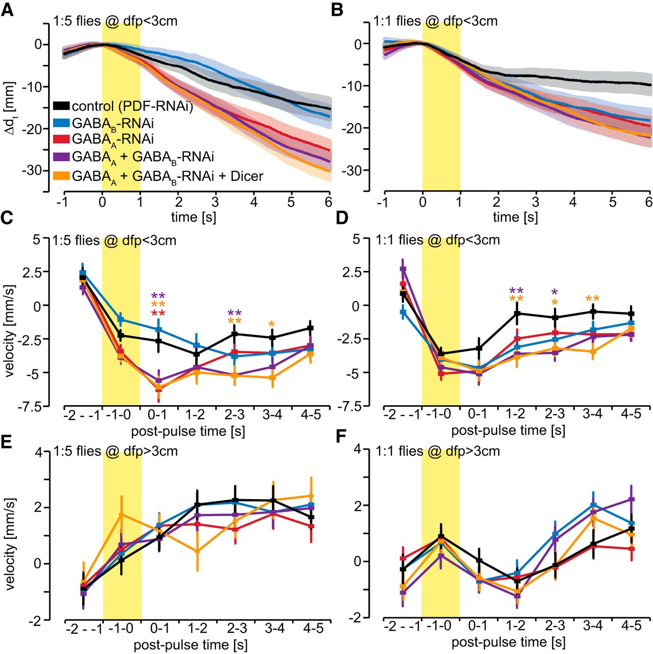 Presynaptic Gaba Receptors Mediate Temporal Contrast Enhancement In Post Back With Questions Obviously Since Your Wiring Has Been Altered Download Figure
