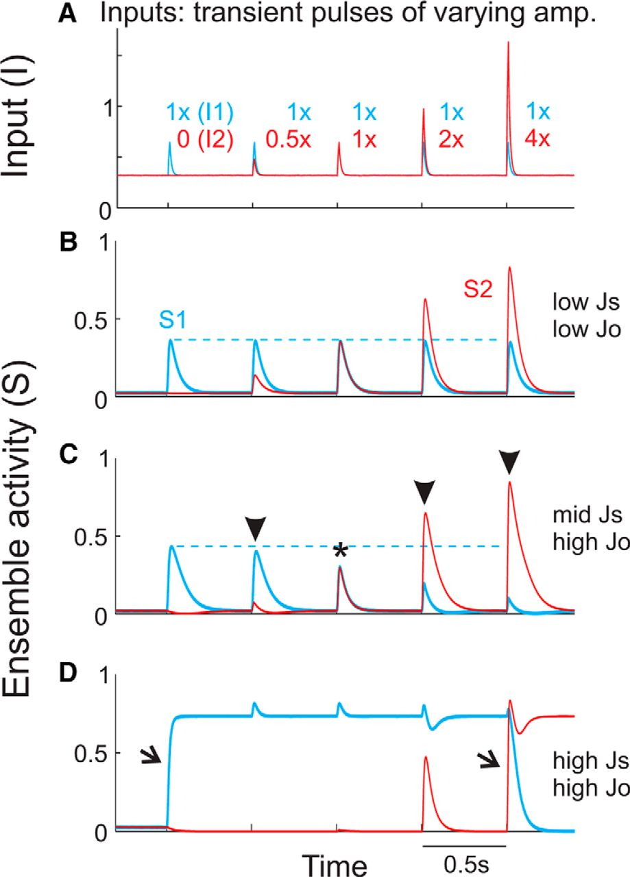 Simulating Cortical Feedback Modulation As Changes In Excitation And Time Delay Circuits Activity Download Figure