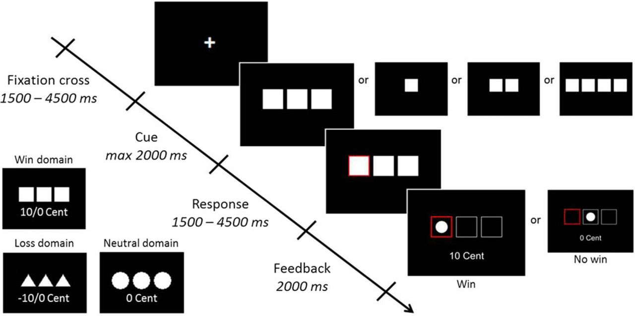 Gain and loss related brain activation are associated with download figure biocorpaavc Gallery