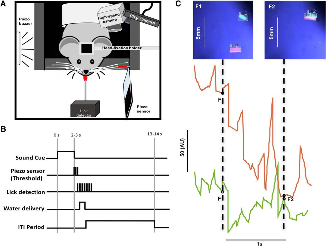 Pixying Behavior A Versatile Real Time And Post Hoc Automated Figure1 Color Sensor Circuit Download Figure