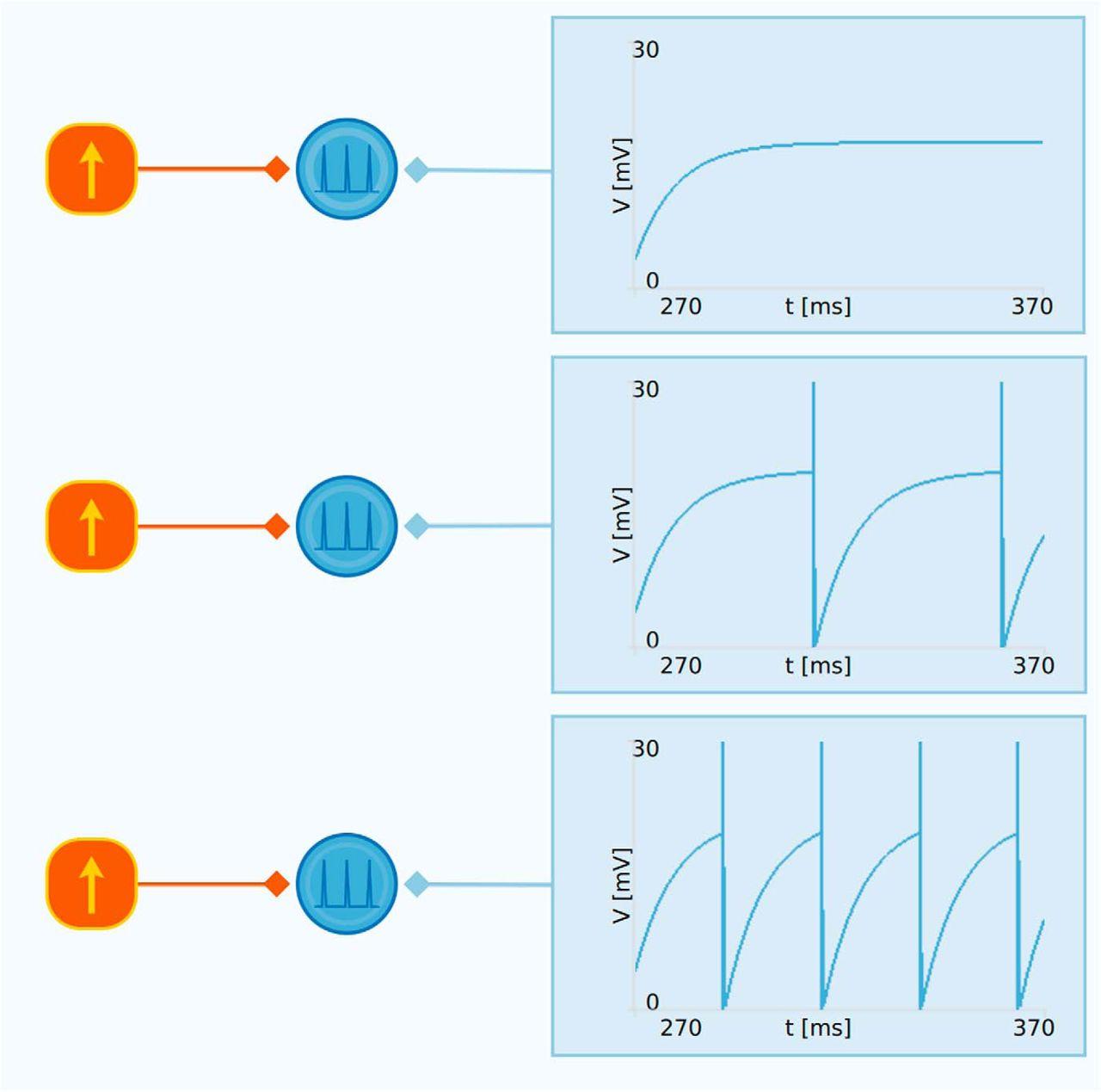 Neuronify: An Educational Simulator for Neural Circuits | eNeuro