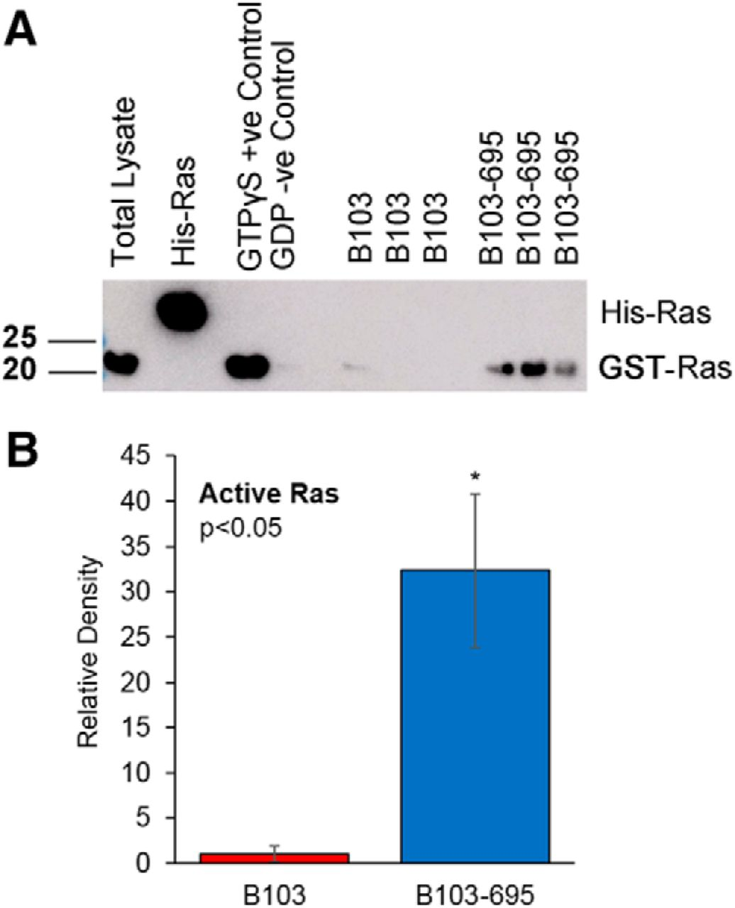Activation of Ras-ERK Signaling and GSK-3 by Amyloid