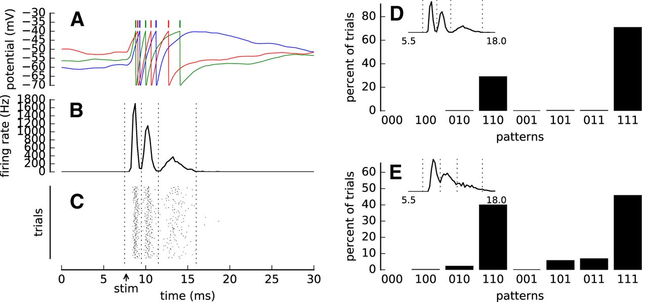 Refractoriness Accounts for Variable Spike Burst Responses in