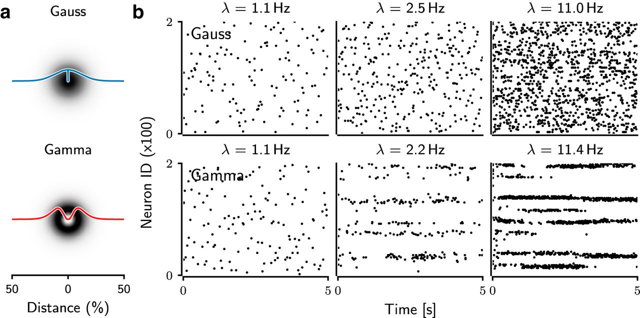 Activity Dynamics and Signal Representation in a Striatal Network