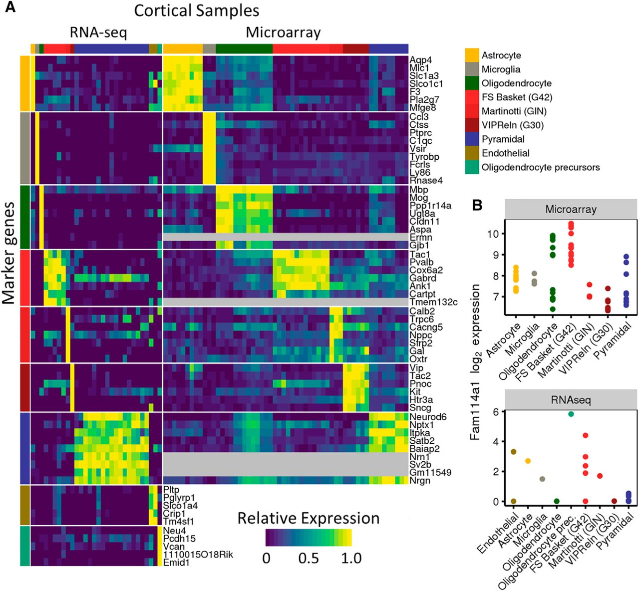 Cross Laboratory Analysis Of Brain Cell Type Transcriptomes With