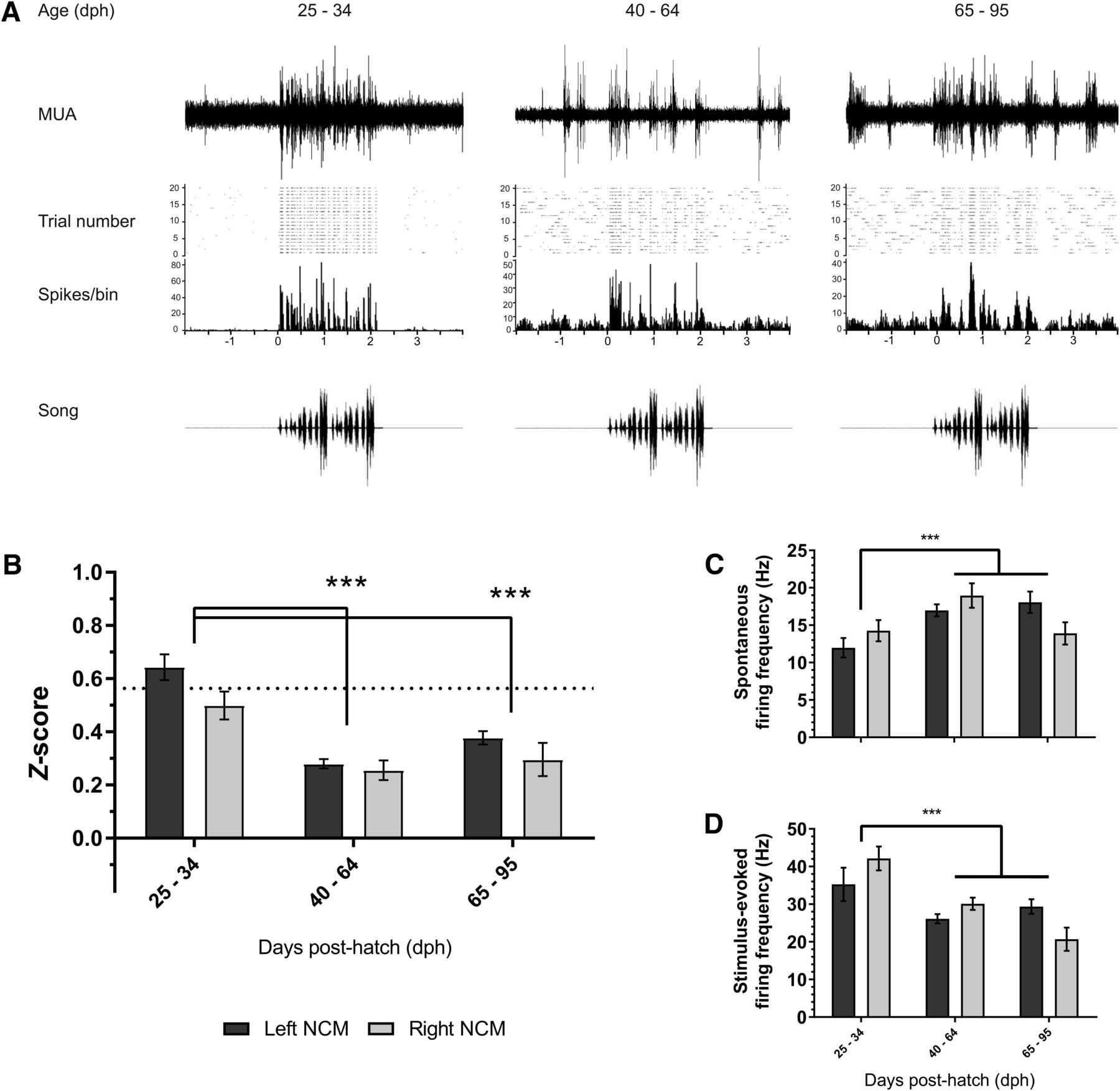 Sensory Coding And Sensitivity To Local Estrogens Shift During Audio Gt Filters 1000 1 Tuning Voltage Controlled Filter Download Figure