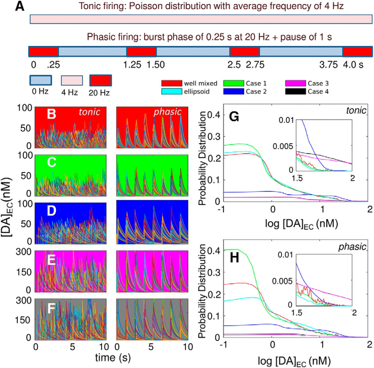 Heterogeneities In Axonal Structure And Transporter Distribution Mains High Low Voltage Cut Off Circuit Using Ic 324 Explained Download Figure
