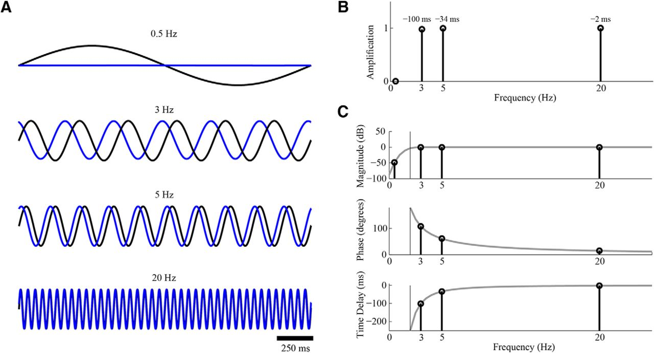 Filter Based Phase Shifts Distort Neuronal Timing Information Eneuro Basic Shift Oscillator 1khz Download Figure
