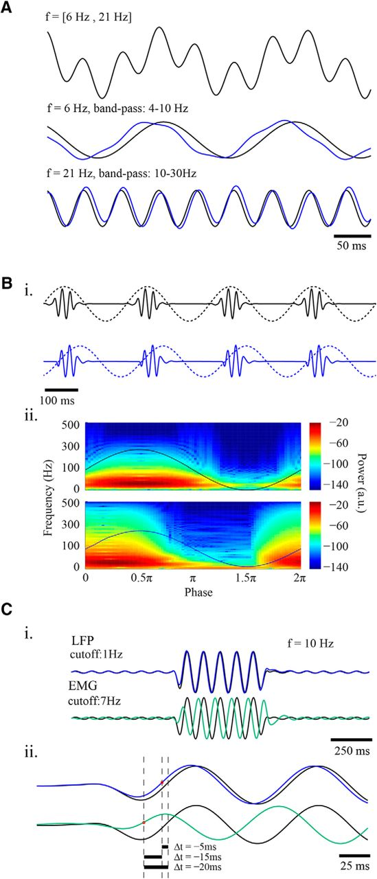 Filter-Based Phase Shifts Distort Neuronal Timing