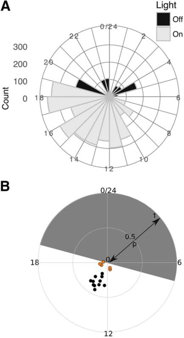 Circadian And Brain State Modulation Of Network Hyperexcitability In Fig 512 A Class B Circuit Constant Voltage Push Download Figure