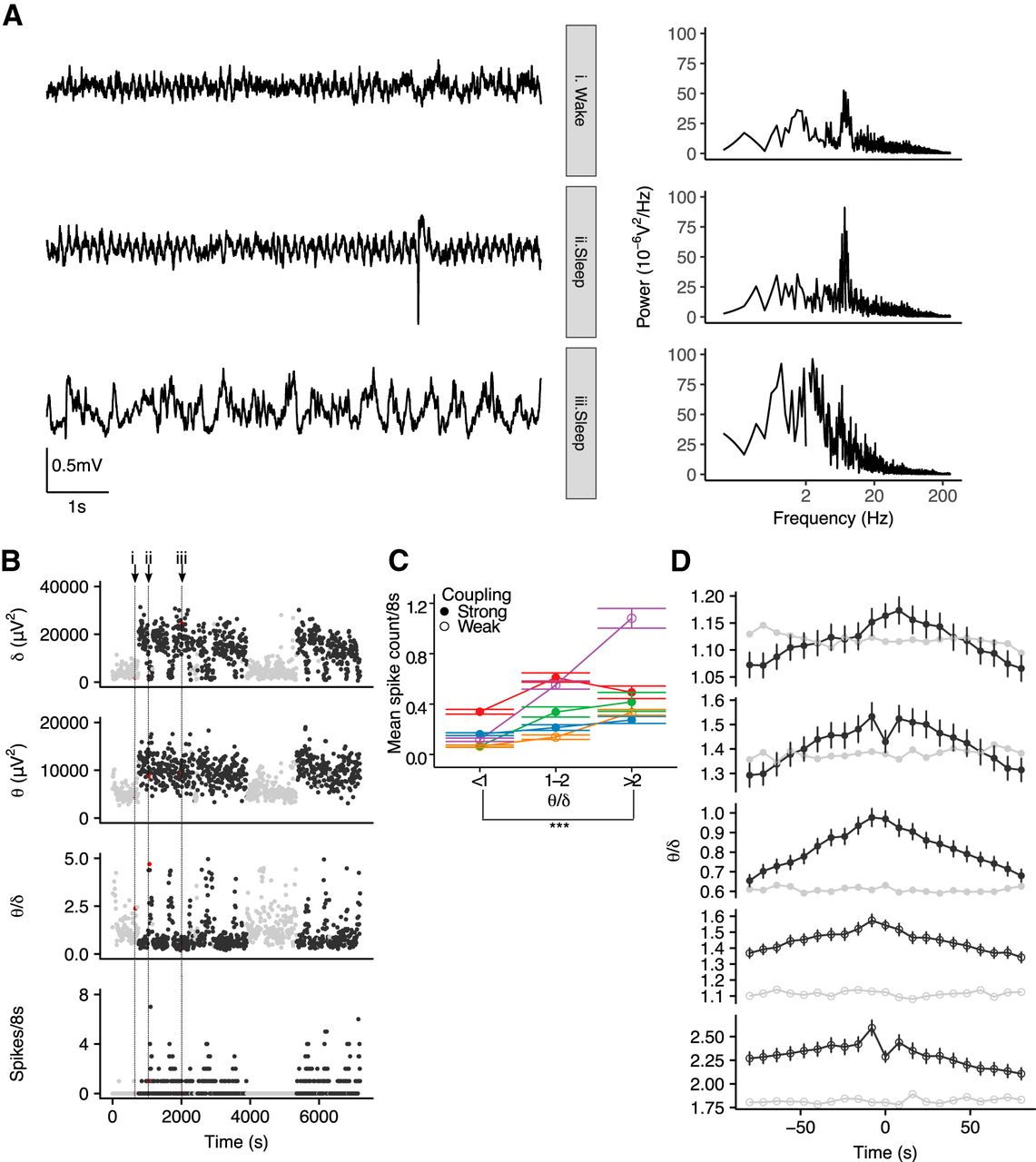 Circadian And Brain State Modulation Of Network Hyperexcitability In 2010 8 7 Rc Drift Real Circuit Youtube Download Figure