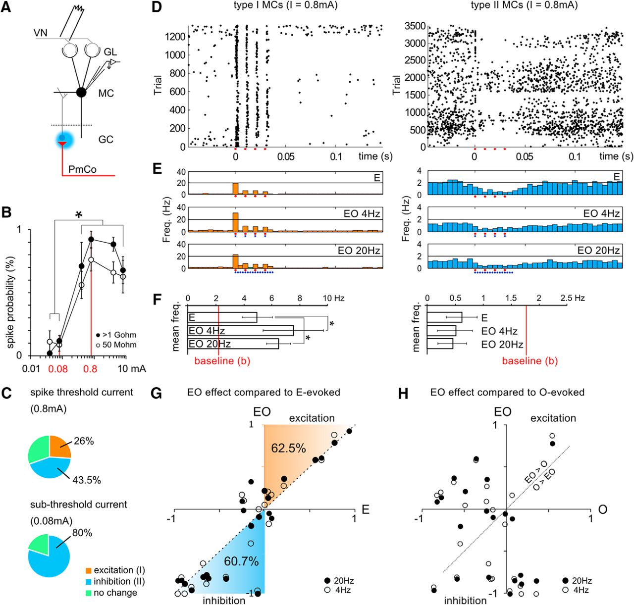 Amygdala Corticofugal Input Shapes Mitral Cell Responses In The Dj 5a Wiring Diagram Download Figure