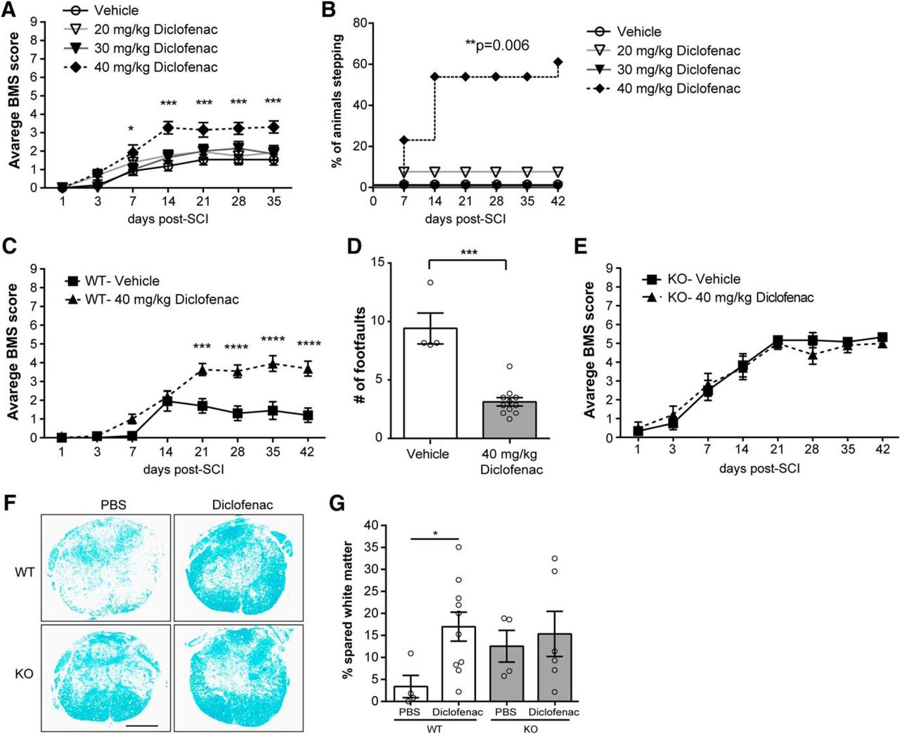 Early Targeting of L-Selectin on Leukocytes Promotes Recovery after ...