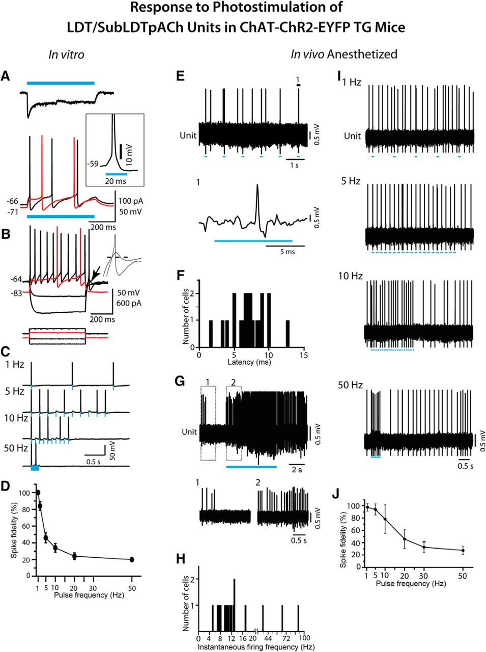 Discharge And Role Of Acetylcholine Pontomesencephalic Neurons In 2006 Pace Arrow Slide Out Wiring Diagram Download Figure