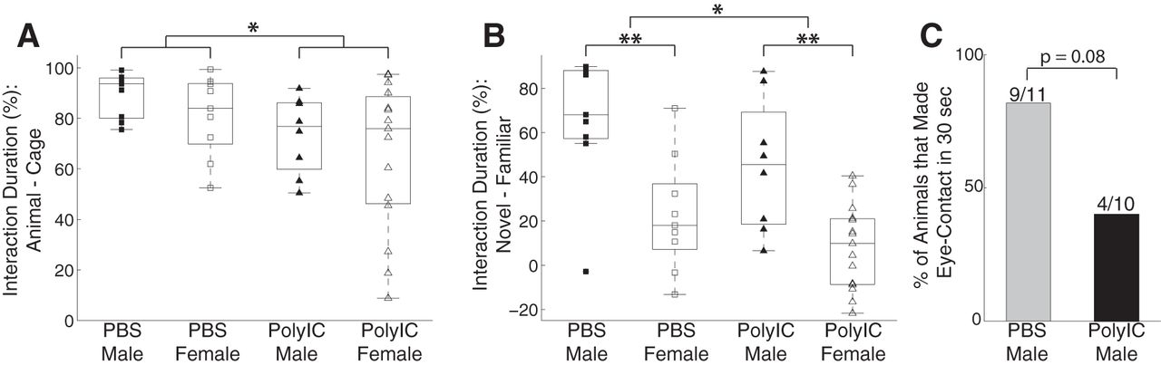 F1.large maternal immune activation alters adult behavior, gut microbiome and