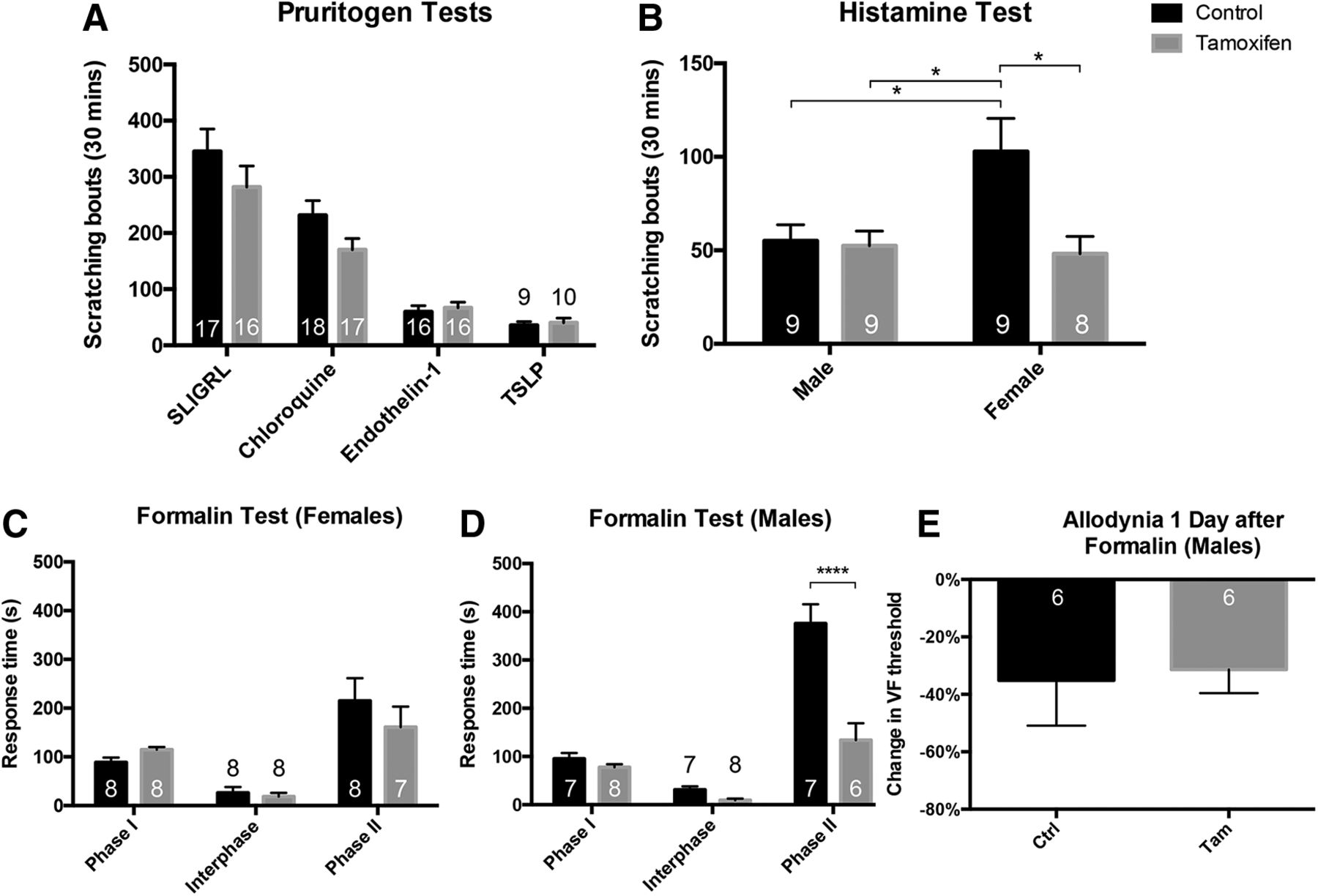Primary Afferent-Derived BDNF Contributes Minimally to the