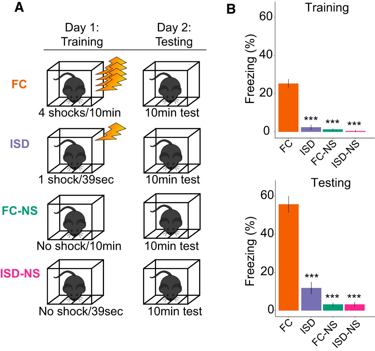 Cell-Type-Specific Changes in Intrinsic Excitability in the