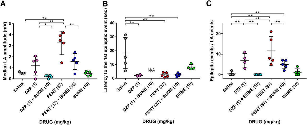 The Pharmacological Assessment of GABAA Receptor Activation