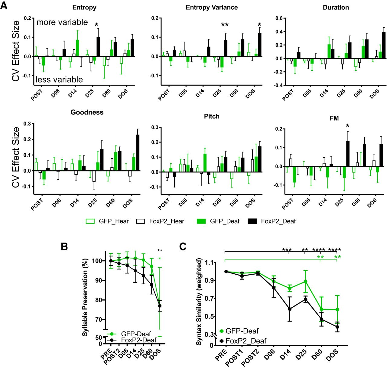 Beyond Critical Period Learning: Striatal FoxP2 Affects the