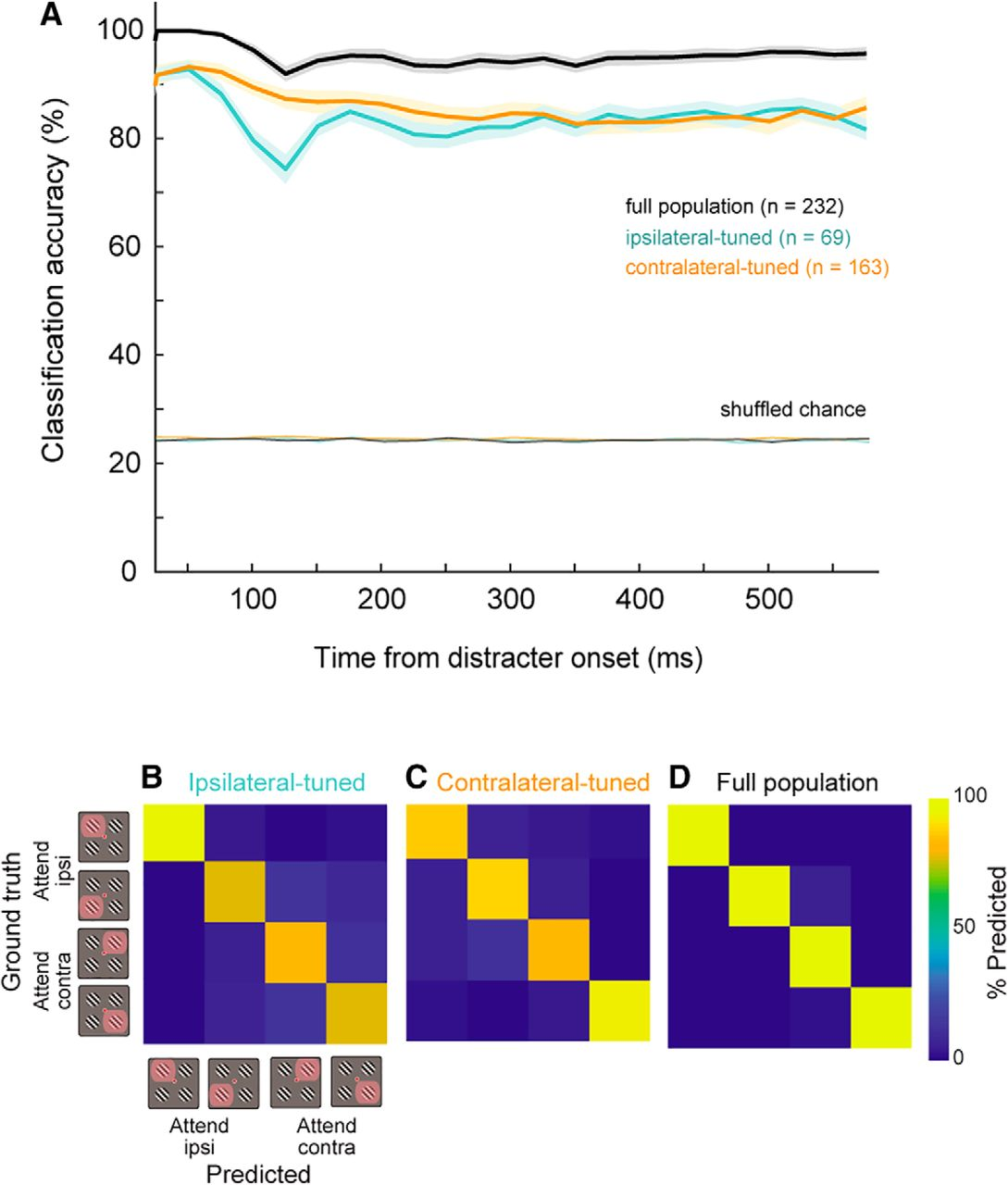 A Normalization Circuit Underlying Coding of Spatial