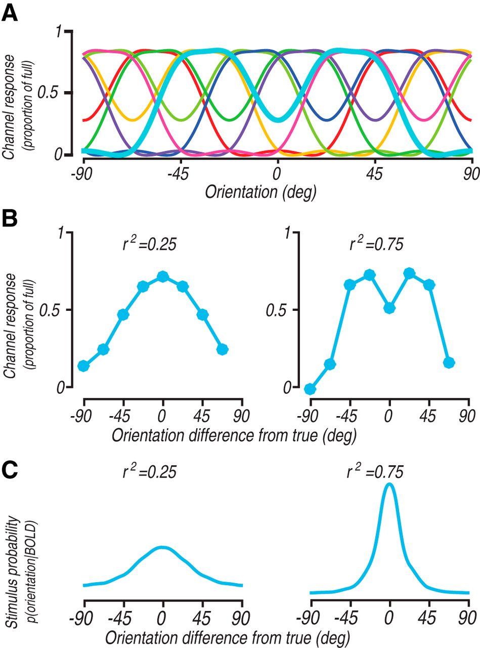 Inverted Encoding Models Reconstruct an Arbitrary Model Response