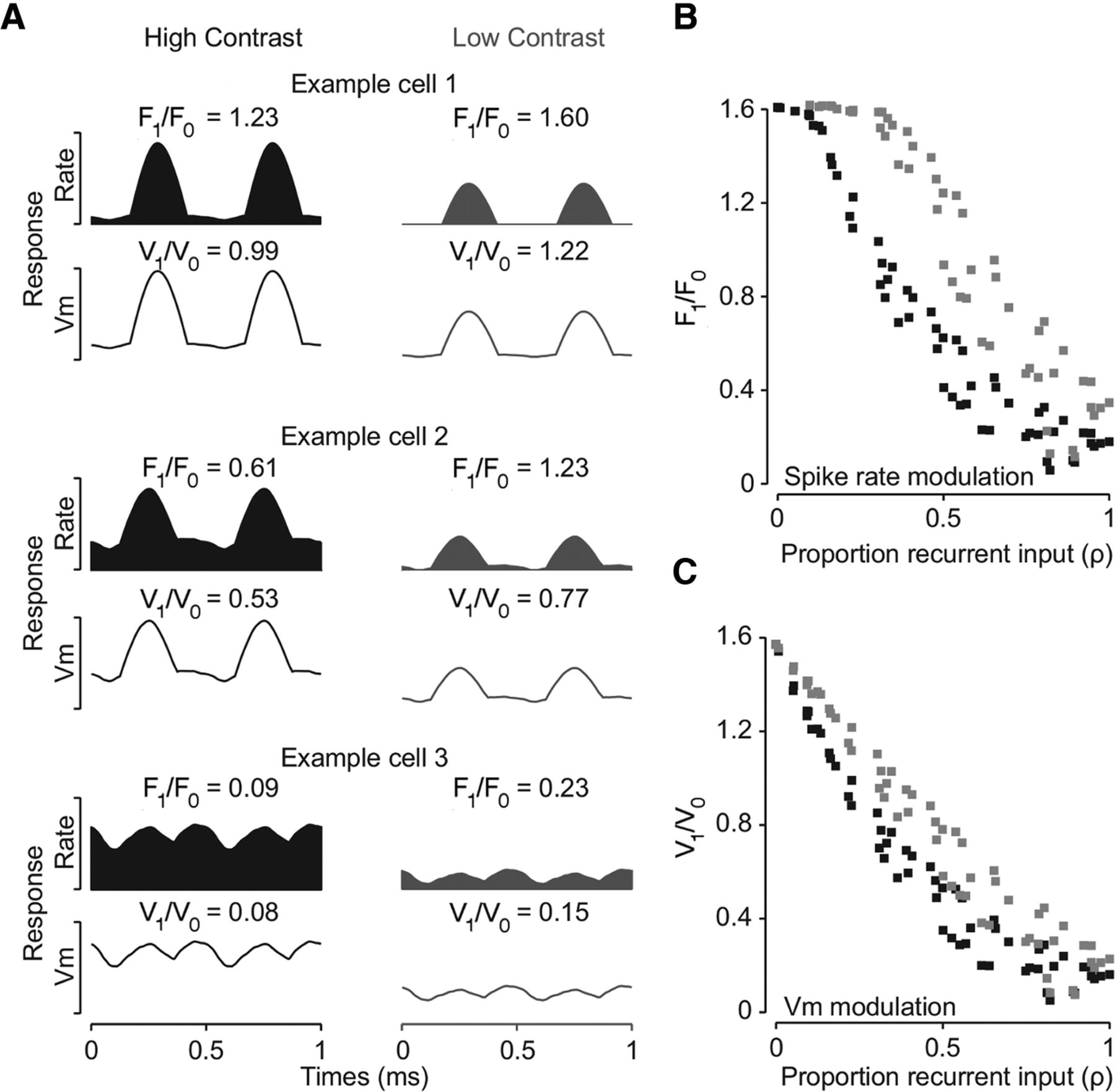 Synaptic Basis for Contrast-Dependent Shifts in Functional Identity