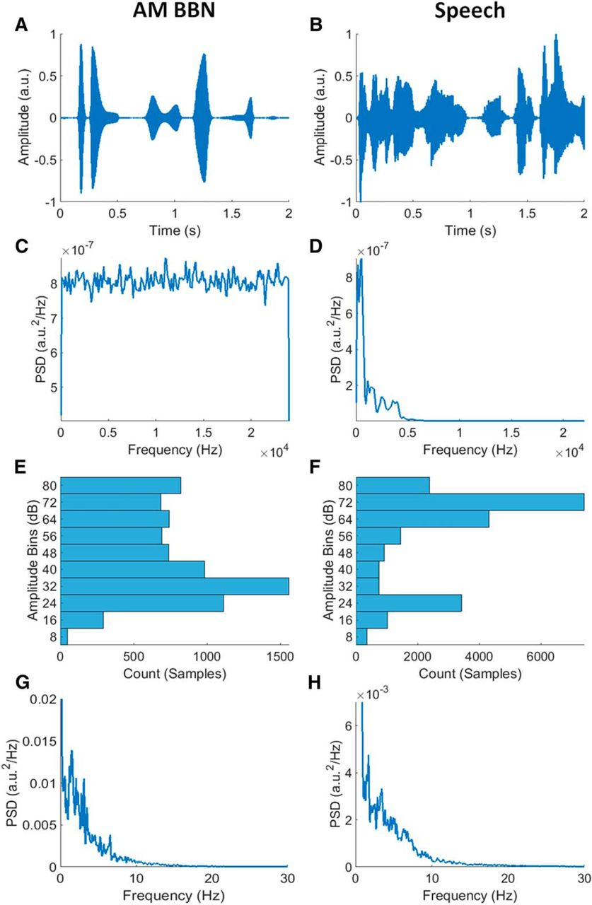 Cortical Tracking of Complex Sound Envelopes: Modeling the