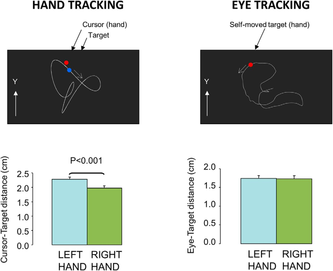 Handedness Matters for Motor Control But Not for Prediction | eNeuro