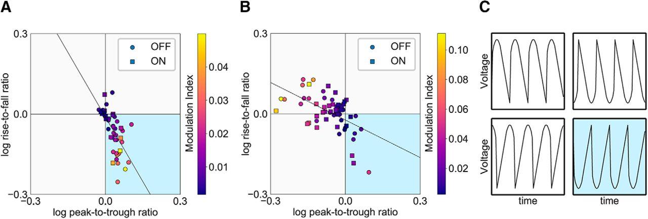 Characteristics of Waveform Shape in Parkinson's Disease