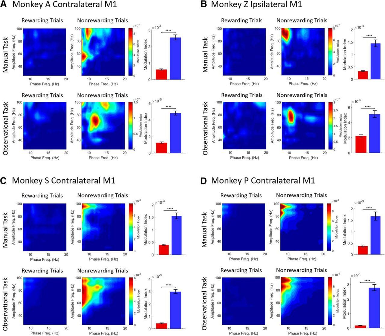 Reward Expectation Modulates Local Field Potentials, Spiking