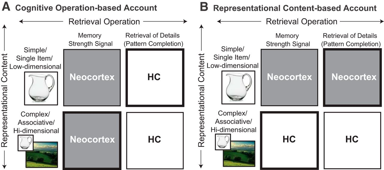 A Roadmap for Understanding Memory: Decomposing Cognitive
