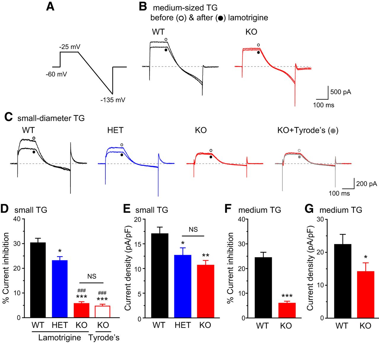 TRESK K+ Channel Activity Regulates Trigeminal Nociception and
