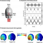 θ-γ Cross-Frequency Transcranial Alternating Current Stimulation over the Trough Impairs Cognitive Control