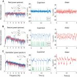 Adaptation and Inhibition Control Pathological Synchronization in a Model of Focal Epileptic Seizure