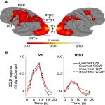 Neural Determinants of Task Performance during Feature-Based Attention in Human Cortex