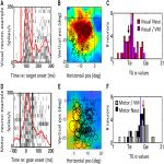 Timing Determines Tuning: A Rapid Spatial Transformation in Superior Colliculus Neurons during Reactive Gaze Shifts