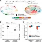 Recurring Functional Interactions Predict Network Architecture of Interictal and Ictal States in Neocortical Epilepsy