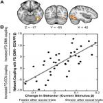 Large-Scale Network Coupling with the Fusiform Cortex Facilitates Future Social Motivation