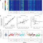 Effects of Chronic Sleep Restriction during Early Adolescence on the Adult Pattern of Connectivity of Mouse Secondary Motor Cortex