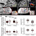Threat Anticipation in Pulvinar and in Superficial Layers of Primary Visual Cortex (V1). Evidence from Layer-Specific Ultra-High Field 7T fMRI