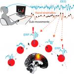 Action Monitoring Cortical Activity Coupled to Submovements