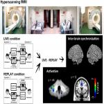 What Makes Eye Contact Special? Neural Substrates of On-Line Mutual Eye-Gaze: A Hyperscanning fMRI Study