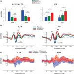 The Temporal Dynamics of Scene Processing: A Multifaceted EEG Investigation