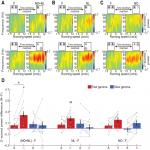 Fast Gamma Rhythms in the Hippocampus Promote Encoding of Novel Object–Place Pairings