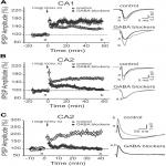 Inhibitory Plasticity Permits the Recruitment of CA2 Pyramidal Neurons by CA3
