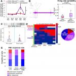 <em>Mecp2</em> Deletion from Cholinergic Neurons Selectively Impairs Recognition Memory and Disrupts Cholinergic Modulation of the Perirhinal Cortex