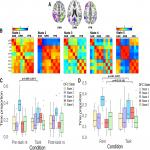 The Time Varying Networks of the Interoceptive Attention and Rest